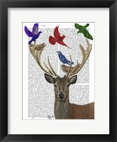 Deer & Birds Nests Framed Print