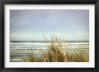 Framed Sea Grasses 2