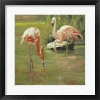 Framed Flamingo II