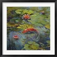 Vermillion Koi Framed Print