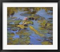 Koi & Lilies II Framed Print