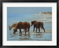 Framed Chincoteague Ponies