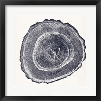 Tree Ring III Framed Print