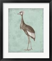Sepia & Spa Heron II Framed Print