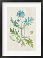 Watercolor Plants III Framed Print
