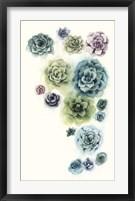 Succulent Cluster I Framed Print