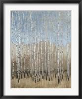 Dusty Blue Birches I Framed Print