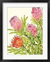 Watercolor Tropical Flowers I Framed Print