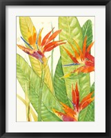 Framed Watercolor Tropical Flowers III