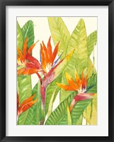 Framed Watercolor Tropical Flowers IV