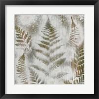 Shenandoah Grove II Framed Print