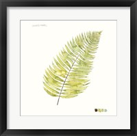 Framed Watercolor Leaf Study IV