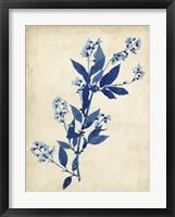 Indigo Leaf Study I Framed Print
