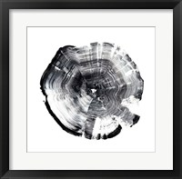 Tree Ring Abstract I Framed Print