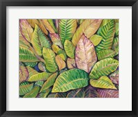 Tropical Close Up I Framed Print
