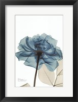 Teal Spirit Rose Framed Print
