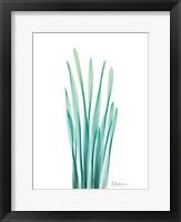 Radiant Bamboo Leaf Framed Print