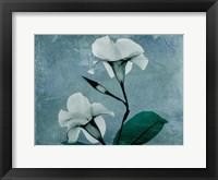 Iceland Mandelilla Framed Print