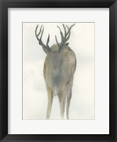 Framed Solo Deer