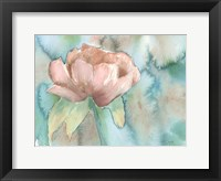Framed Blush Rose