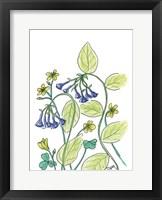 Framed Virginia Bluebells