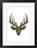 Aged Deer Mate Framed Print