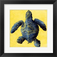Map Turtle Y Indigo Framed Print
