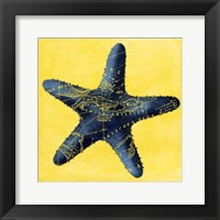 Map Starfish Y Indigo Framed Print