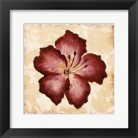 Red Flower Mate Framed Print