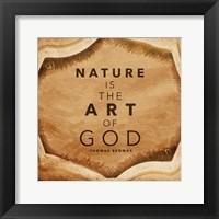 Framed Nature Art