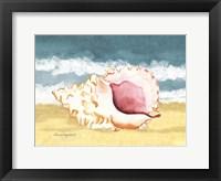 Seashell II Framed Print