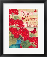 Framed Bloom Where You Are Planted