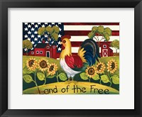 Framed Land Of The Free