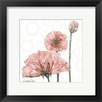 Poppy Umbrella 1 Framed Print