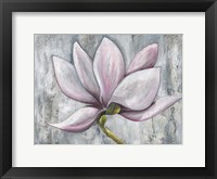 Framed Silken Bloom I