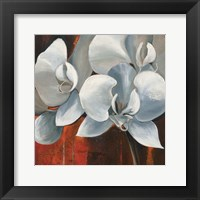 Framed Pearl Orchid I Square
