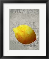 Fruit Watercolor IV Framed Print