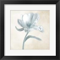 Framed Blue Ivory Blossom 1