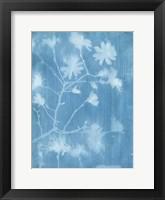 Spring Time Magnolia 1 Framed Print