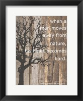 Framed Native American Proverbs