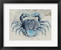 Mysterious Crustacean 2 Framed Print