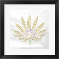 Mellow Flower Framed Print