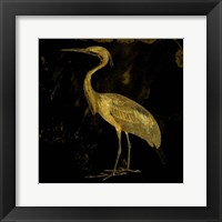 Golden Elegance Framed Print