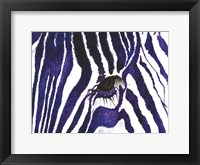 Framed Blue Zebra
