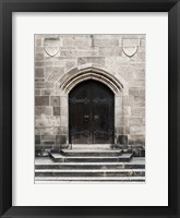 Brown Door Framed Print