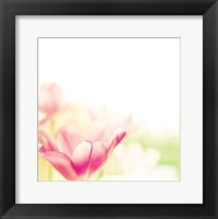 Magic 2 Framed Print