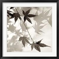 Florison 63 Framed Print