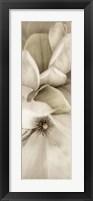 Florison 70 Framed Print