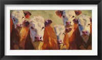 Framed Party of Five Herefords