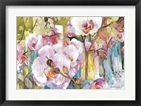 Framed Orchid Oasis